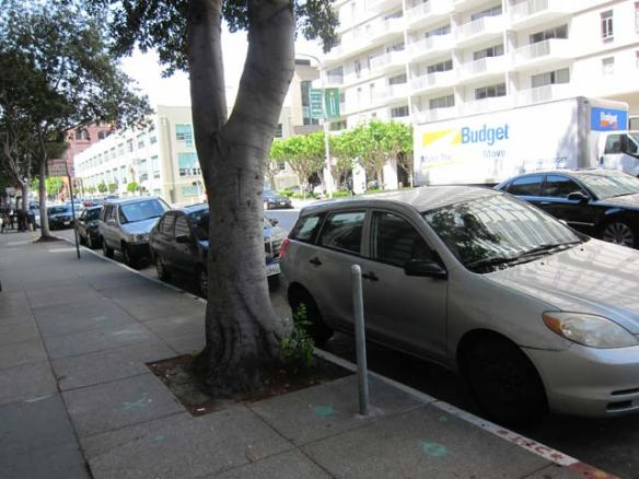 Cars with DPT permits parked in white zones on Saturday.